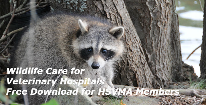 Wildlife Care Handbook for Veterinary Hospitals