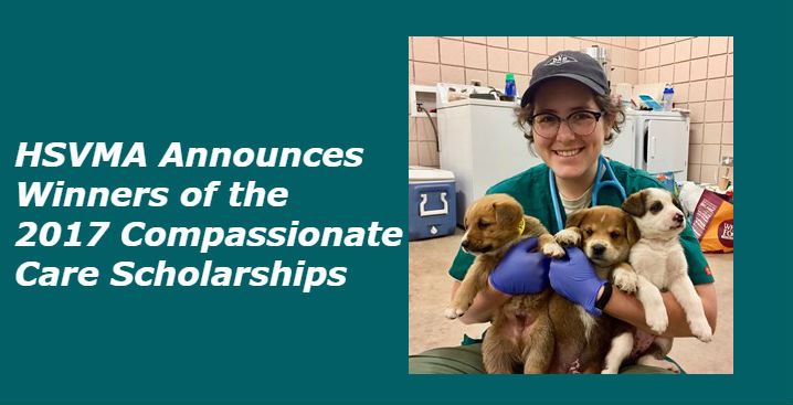 2017 Compassionate Care Scholarship